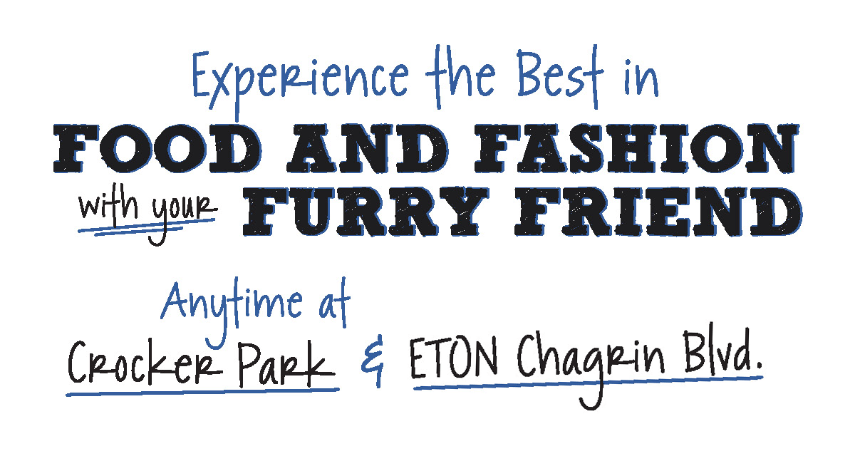 Food & Fashion with your Furry Friend